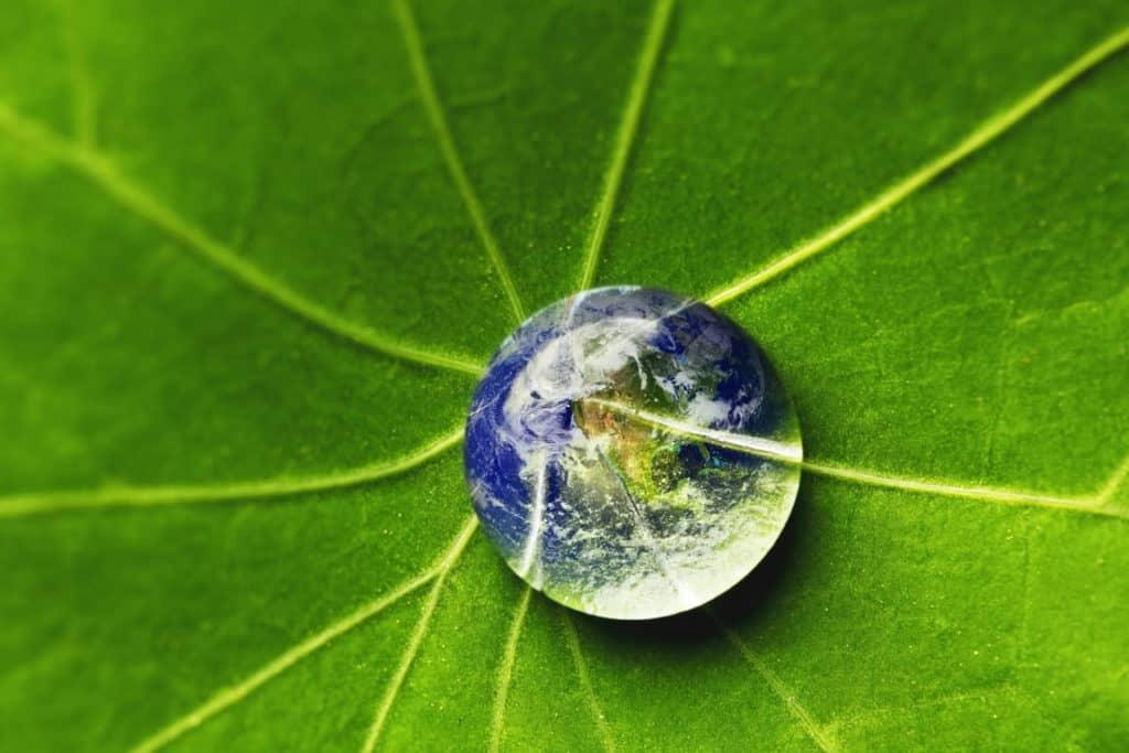 Regenwater goed voor milieu